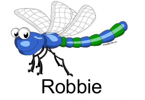 807-FF Dragonfly, Male