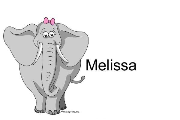 810-FF Elephant, Female