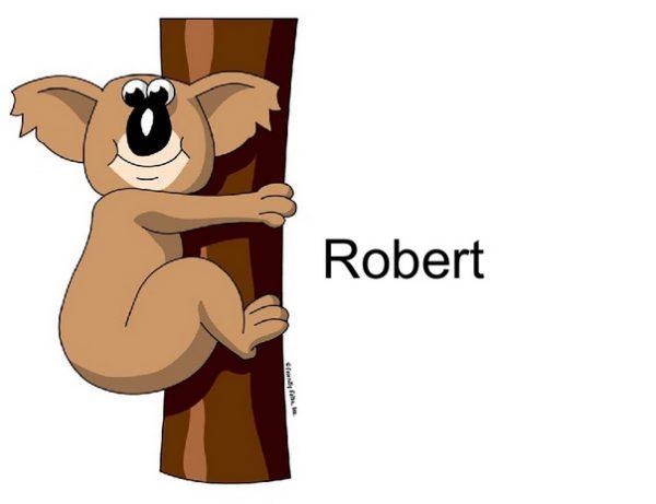 818-FF Koala Bear