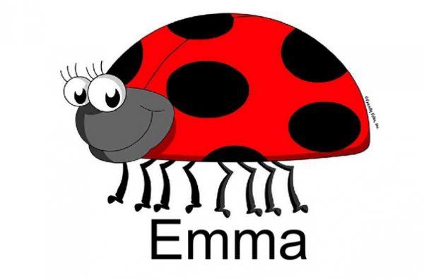 819-FF Ladybug