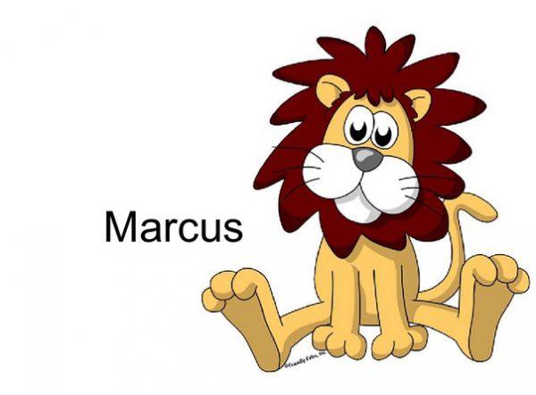 821-FF Lion, Male