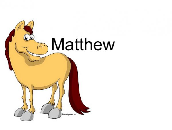 859-FF Pony