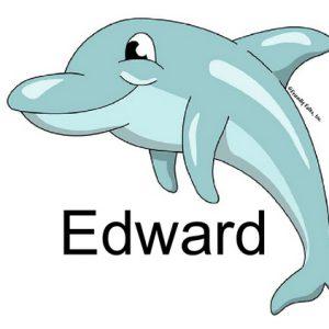 860-FF Dolphin